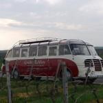 Setra S 8 05 in den Weinbergen